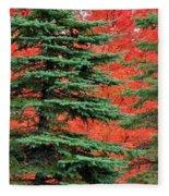 Minnesota Autumn Spruce Maple Fleece Blanket