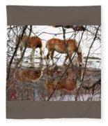 Mirror Magic Fleece Blanket