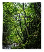 Missisquoi River In Vermont - 1 Fleece Blanket