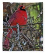 Mister Cardinal Fleece Blanket