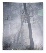 Misty Morning - Ojai California Fleece Blanket