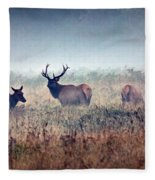 Misty Morning Fleece Blanket