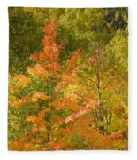 Mixed Autumn Fleece Blanket