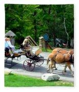 Mohonk Carriage Tour Fleece Blanket