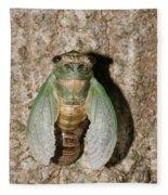 Molting Cicada #2 Fleece Blanket