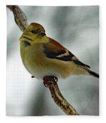Molting In January? - American Goldfinch Fleece Blanket