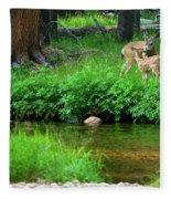 Mom And Baby Deer Fleece Blanket