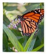 Monarch Butterfly 3 Fleece Blanket