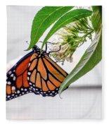 Monarch Butterfly In The Garden 3 Fleece Blanket