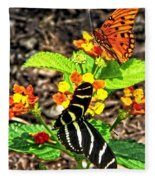 Monarch Butterfly And Zebra Butterfly Fleece Blanket