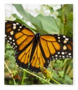 Monarch Butterfly II Fleece Blanket