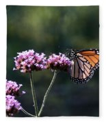 Monarch Butterfly IIi Fleece Blanket