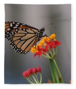 Monarch Butterfly On Milkweed Fleece Blanket