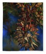 Monarch Cluster Fleece Blanket