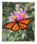 Monarch On Blanket Flower Fleece Blanket