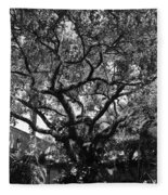 Monastery Tree Fleece Blanket
