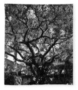 Monastery Tree Fleece Blanket