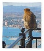 Monkey Overlooking Spain Fleece Blanket