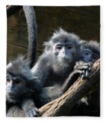 Monkey Trio Fleece Blanket