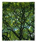 Monkeypod Canopy Fleece Blanket