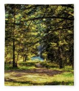 Montana Scenery Fleece Blanket