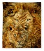 Moods Of Africa - Lions 2 Fleece Blanket