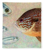 Mooneyes, Sunfish Fleece Blanket