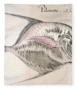 Moonfish, 1585 Fleece Blanket