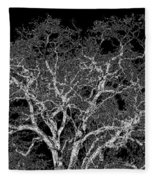 Moonlit Night Fleece Blanket