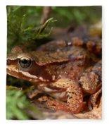 Moor Frog In September  Fleece Blanket