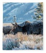 Moose In Cold Winter Ice Fleece Blanket