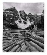 Moraine Lake Driftwood No 2 Fleece Blanket