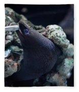 Moray Eel Eating Little Fish Fleece Blanket