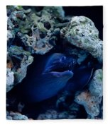 Moray Eel Or Muraenidae Fish Fleece Blanket