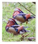 More Mandarin Ducks Fleece Blanket