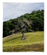 Morgan Territory Oak Fleece Blanket