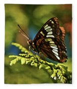 Mormon Metalmark Fleece Blanket