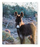 Morning Curiosity Fleece Blanket