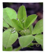 Dewdrops On Leaves Fleece Blanket