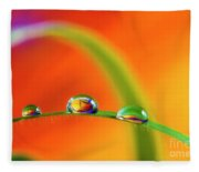 Morning Dewdrops Fleece Blanket