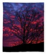 Morning Glory 1 Fleece Blanket