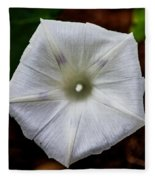 Morning Glory White Fleece Blanket
