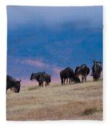 Morning In Ngorongoro Crater Fleece Blanket
