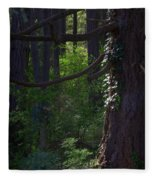 Morning In The Pacific Northwest Fleece Blanket