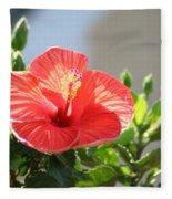 Morning Light Hibiscus Fleece Blanket