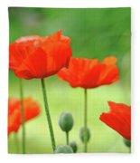 Morning Light Poppies Fleece Blanket
