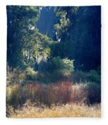 Morning Marsh Sunshine Fleece Blanket