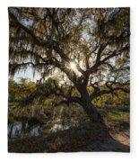 Morning Sun Through The Oak Fleece Blanket