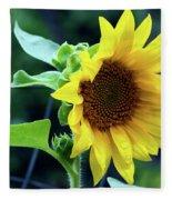Morning Sunflower Fleece Blanket