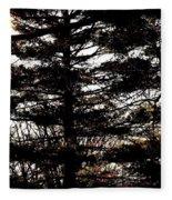 Morning Sunlight Through The Pines Fleece Blanket